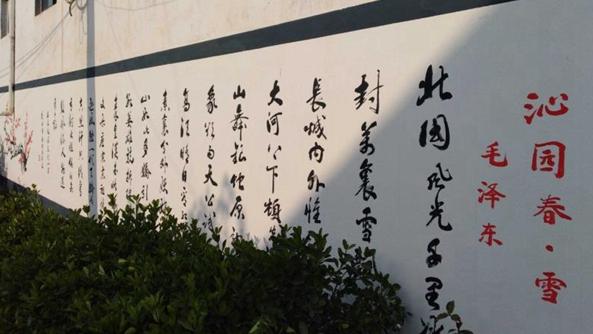 河南杞县:村美人富奔小康