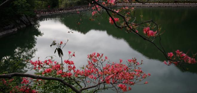 汝阳西泰山:生态旅游惹人醉