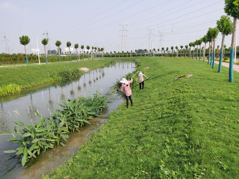 宝丰:绿水环城绕 宜居幸福景