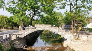 信阳浉河区:美丽乡村入画来