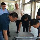 淮滨扎实开展省级食品安全县创建工作