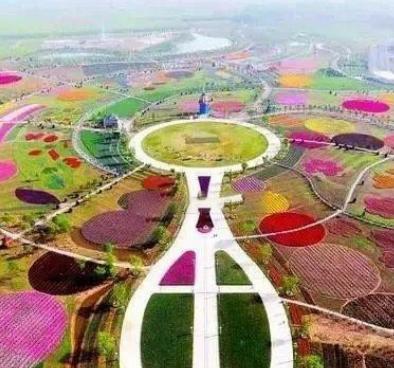"""来""""云上""""世界看""""花样""""百出 2020年花博会将于26日在鄢陵开幕"""