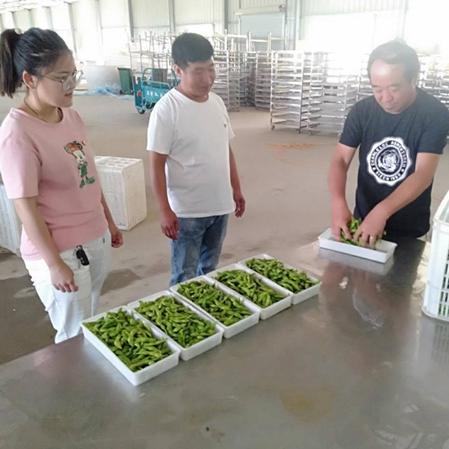 杞县板木乡:发展果蔬加工 助力脱贫致富