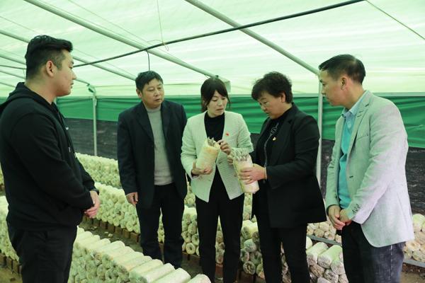 宝丰县:探索优化营商环境新路径