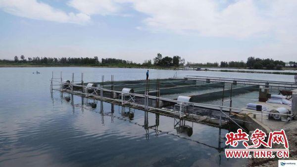 好消息!商丘市新增三家国家级水产健康养殖示范场
