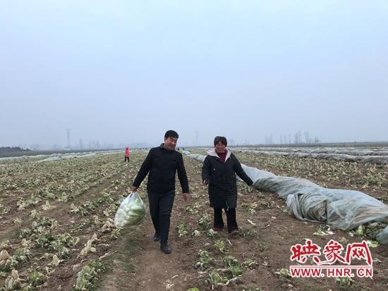 """宝丰县胡恒波:村干部变身""""卖菜哥""""助农销售"""
