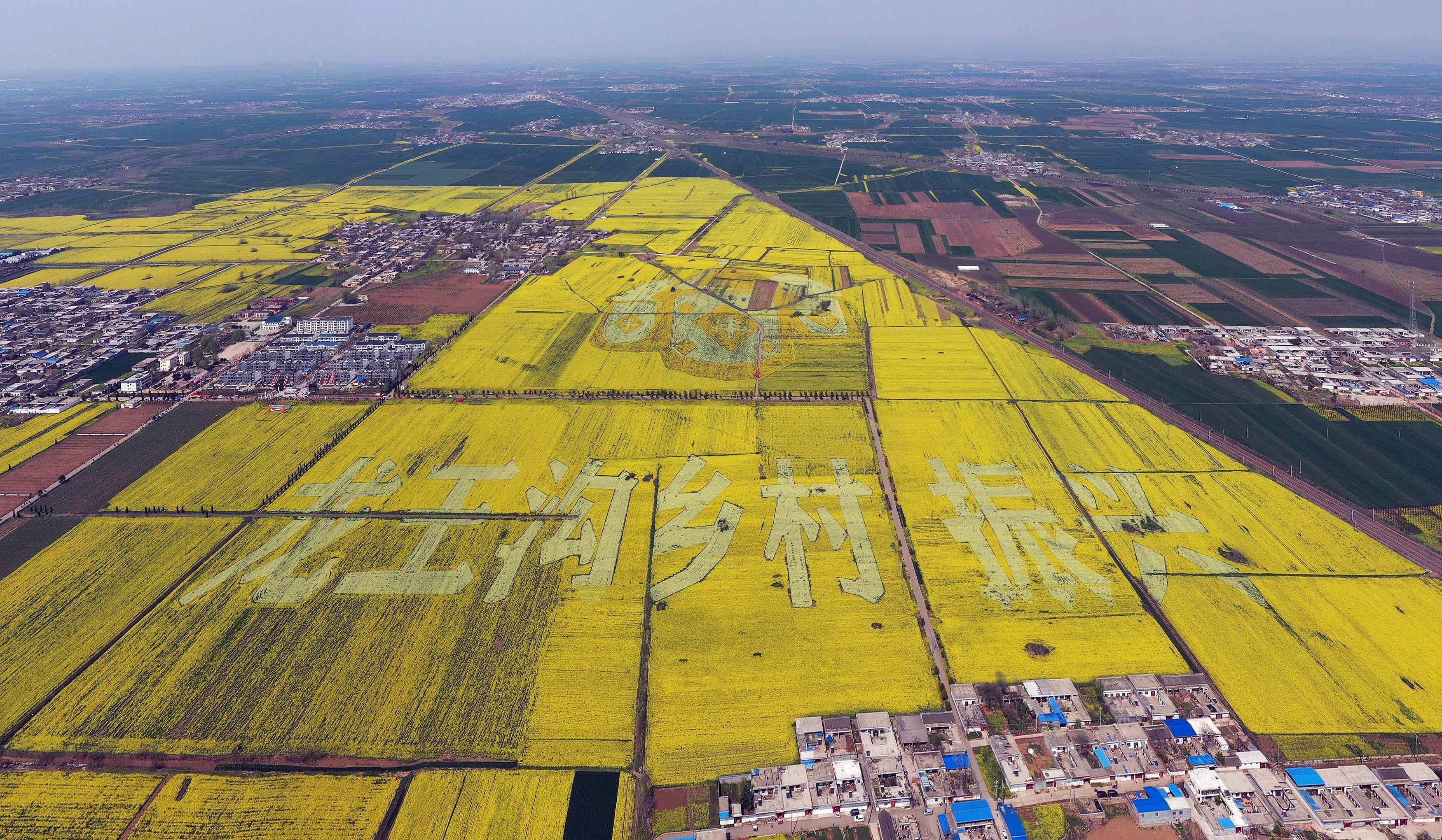 宝丰县以高质量创新引领高质量发展