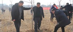 汝州市应急管理局开展新春义务植树活动