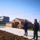 新蔡县棠村镇拓宽路基为造林绿化创环境