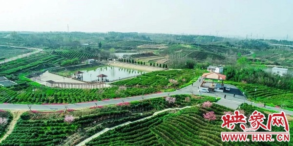 点赞!?信阳平桥区入选2020年全国村庄清洁行动先进县