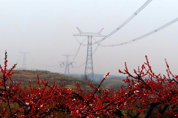 南阳淅川:春季特巡过境特高压?