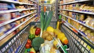 多措并举培育优化国内消费市场