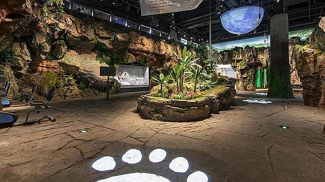 首家大熊猫主题互动体验博物馆开馆