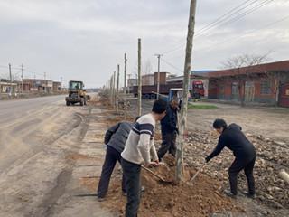 汝州市公路管理局绿化种植工作全面启动
