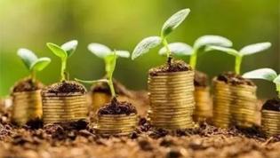 促进经济社会发展全面绿色转型