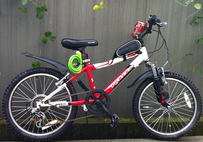 走近外贸网红自行车