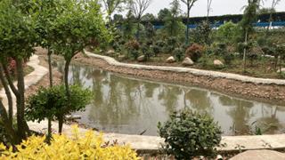 商城鄢岗镇精心打造景观小品 提升乡村颜值