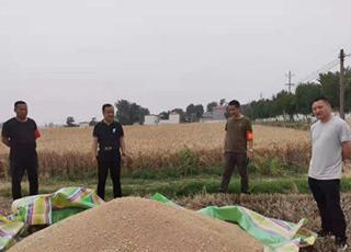 襄城自然资源局开展三夏生产秸秆禁烧工作