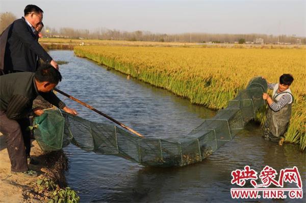 淮滨张明勤:远赴万里钻研技术 致富不忘众乡邻
