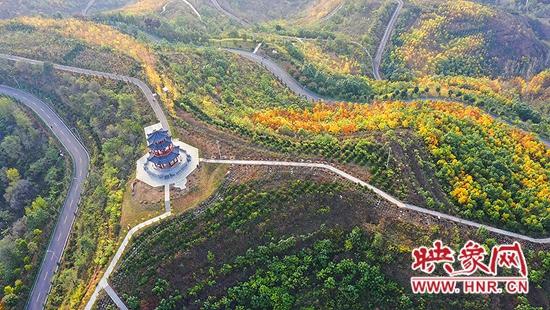 """仙境般的玉皇山森林公园 藏着嵩县""""醉""""美的秋色"""