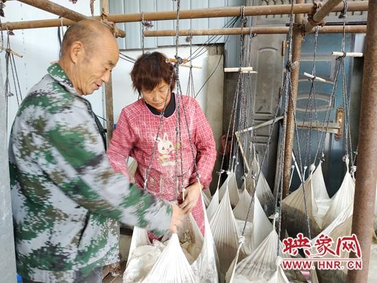 鲁山县:红薯粉条加工忙 村民走上致富路