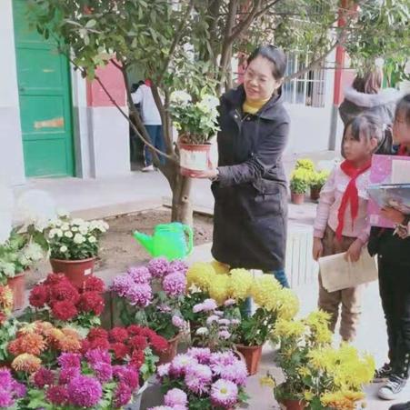 开封顺河区第三实验小学主题校园花展活动