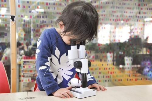 如何呵护孩子的好奇心