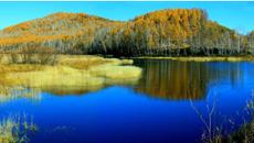 """""""十三五""""我国新增湿地300多万亩"""
