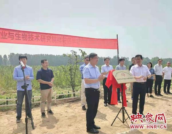 九彩藜麦喜丰收 全省首个河南大学挂牌藜麦实验基地完成试种