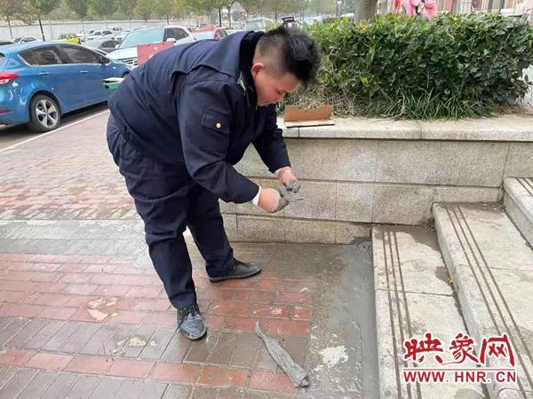 """开封示范区城管局:修复""""盲点""""破损为道路""""疗伤"""""""