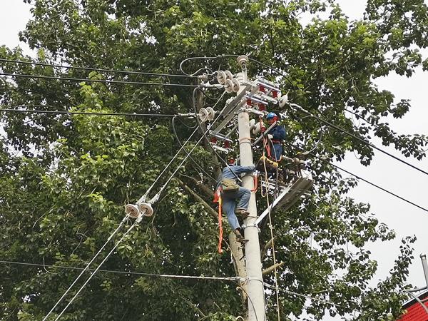 """洛阳:优质供电服务""""提速""""高标准农田建设"""
