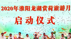 """""""五朵金花""""闹中原 齐聚淮阳谋发展"""