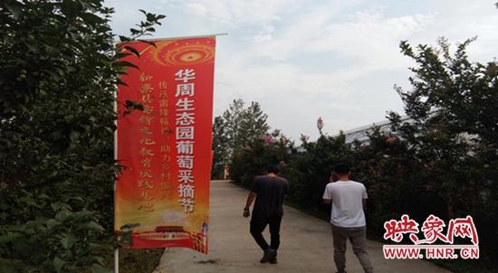 新蔡县李桥回族镇华周生态园举办采摘节