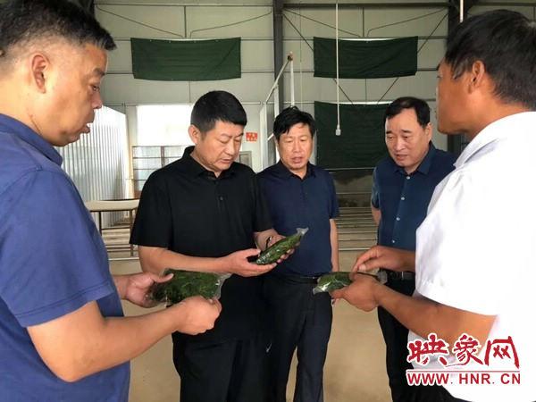 """西平县""""扶贫车间""""带动贫困户脱贫效果最大化"""