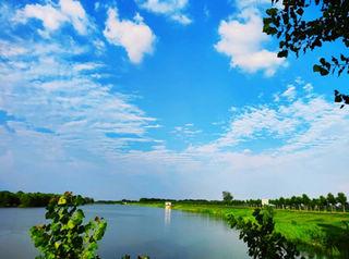 """长垣市:全面落实河湖长制 绘就青山绿水""""锦绣画卷"""""""