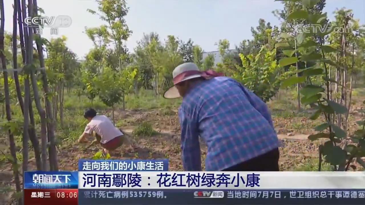 许昌鄢陵:好日子绽放在花红绿树丛中