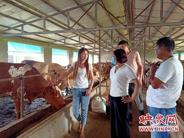 开封通许县:挖掘带贫项目 助力脱贫攻坚