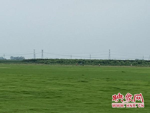 许昌市朱庄村:红花绿草拓宽幸福小康路
