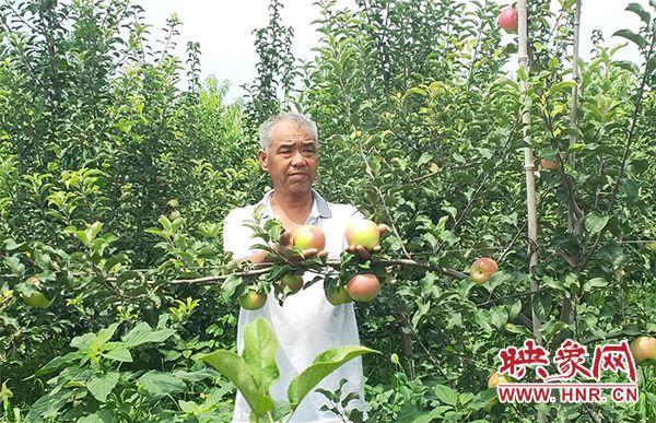 """商丘市路河镇:四季采摘不空挡 万里飘香""""百果园"""""""