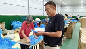 金国平:招商引资助力乡村振兴