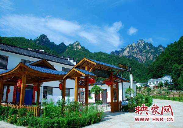 西峡县:生态产业筑牢乡村振兴根基