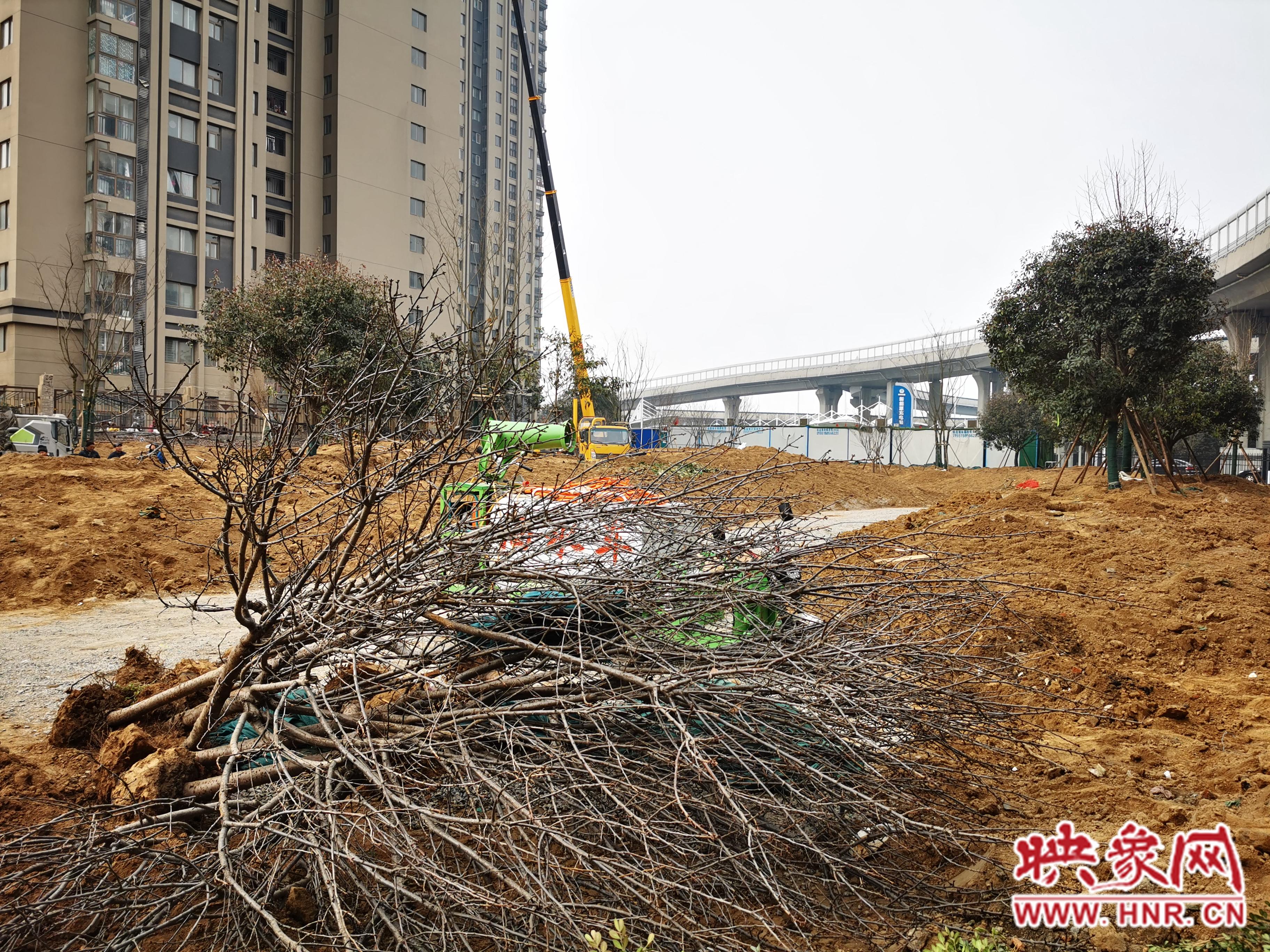 郑州中原区新增一街头游园 春节前建成