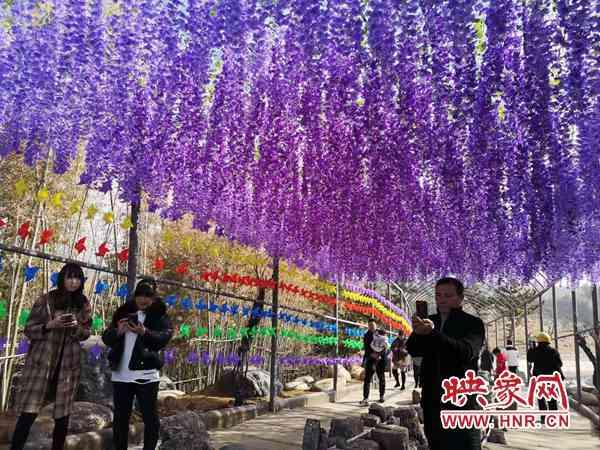 欢声笑语!南召县:春节假期 乡村游火爆刷屏