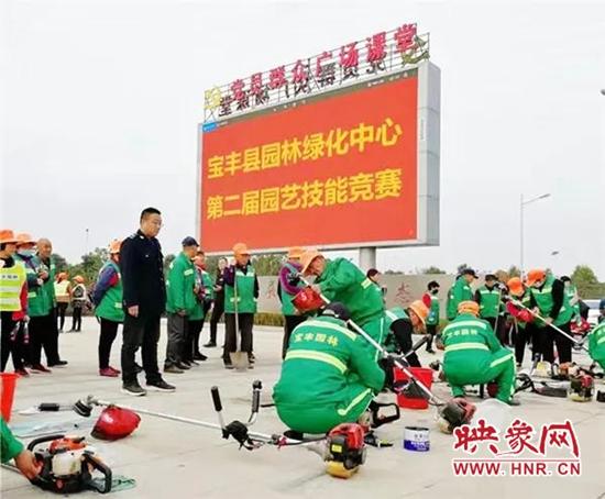 宝丰县:林绿花红锦绣地