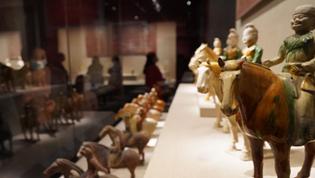 《唐宫夜宴》出圈 河南博物院引游客打卡