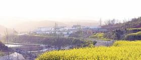 南阳淅川:路网通幸福来
