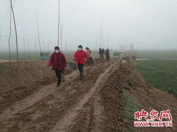 尉氏县朱曲镇:持续推进国土绿化工作