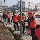 邓州市林扒镇组织开展春季植树活动