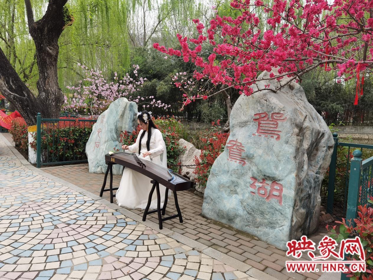 郑州市动物园桃花文化节今日开幕 身穿汉服可免票入园