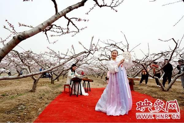 内黄:三月桃花美如画 桃花园里赏春光